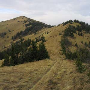Peaks of the Lviv Region: Parashka Mountain